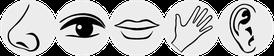 Merkmale hochsensibler Menschen. Coaching, Gesprächstherapie. Tagesseminar, Seminar, Gruppencoaching, Kurs und Tipps bei Hochsensibilität. In Zürich Oerlikon und Zürich Oberland / rechtes Zürichsee-Ufer / Volketswil / Uster