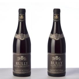 Domaine de la Folie - Pinot noir d'appellation Rully