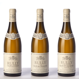 Domaine de la Folie - Chardonnay d'appellation Rully
