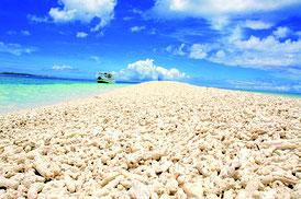 大賞作品の「サンゴが奏でる島」(提供写真)