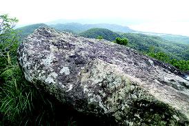 野底マーペーの山頂で倒れた岩=27日午後撮影