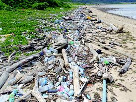 多数のごみが漂着している西表島北部の野原海岸(3月22日撮影、山口晴幸氏提供)