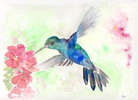 Kolibri, Vogel, Illustration, Aquarell, Seelentier