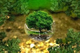Commande publique et développement durable