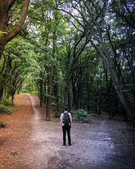 Mann steht an einer Weggabelung wo der linke Weg hell beleuchtet ist und der rechte Weg dunkel ist