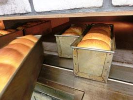 焼きたて溶岩食パン