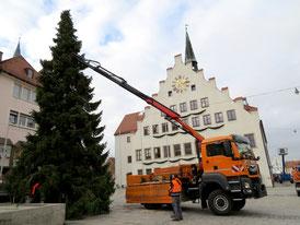 Baum wird abgeladen; Foto: Dr. Franz Janka