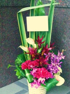 お祝い花 オープン2