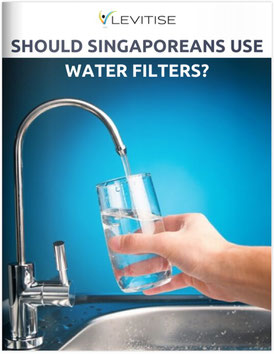 Levitise Singapore Water Filter Guide