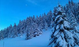Abendstimmung während einem der unzähligen Langlauftrainings im Berner Jura