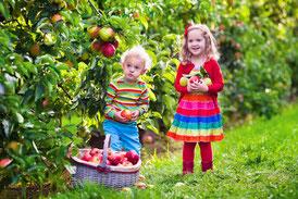 Kinder im Garten - Gartenwerkzeuge für Kinder