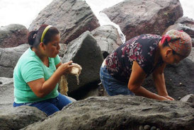 Adriana blows on the sea snail to make it secrete the dye.
