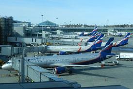 Flugzeuge der Aeroflot in Moskau-Scheremetjewo