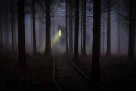Mörk skog med ljus från hus
