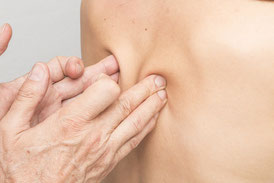 Article : Le Tissu conjonctif, notre substance fondamentale