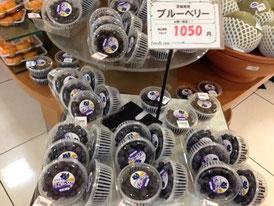 大丸で売ってたブルーベリー(JA土浦)
