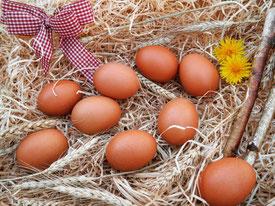 Eier und Stroh in der Eier Tasse
