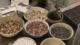 苔玉を飾る石 500円