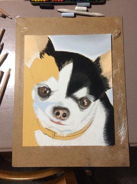 crayon pastel de chien