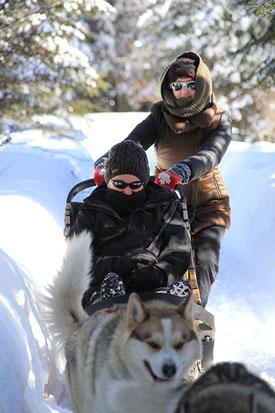 Où-faire-du-chien-de-traineau-au-Québec