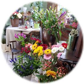 frische Blumen in großer Auswahl in der Blumenstube am Schloß