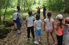 Visite,activité ferme, camping