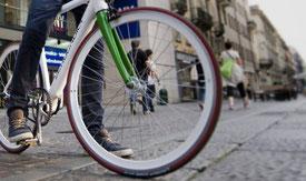 MATERA noleggio bici scooter