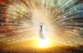 Spirituelle Therapie, Heiler, Essenzheilung, Life-Coaching, Energiearbeit, Quantenheilung, Geistheiler, geistiges Heilen, Schamanismus + Heilen, energetisches Heilen, Lichtarbeiter, Spiritualität, Transformation Matrix, Essenzarbeit, Logosynthese, Yager-C