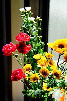 玄関に赤いカーネーションと黄色と白の小さな花を生けたよ♪