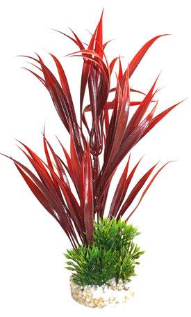 Sydeco Aquariumpflanze