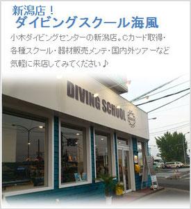 ダイビングスクール海風 店舗情報へ