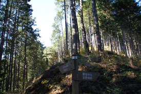 大切な道標。気付けばすれ違う人の数が少ない…。前半の日の出山までの賑わいとは間伐された木々を斜面に沿い段々に置いている様子。さて、もうこの辺りは、柚木の森なのでしょうか…。