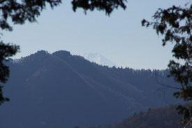 尾根の先にはチラッと富士山