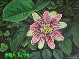 passiflora, olio su tela cm 30x40 - 2015