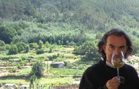 ルイス・グティエレス氏、リベイロを高評価 (www.vinetur.com)