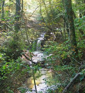 Wasserfall Wiesaz