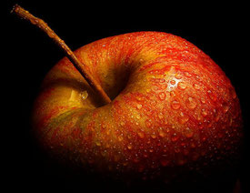 Der Apfel steht symbolisch für den verbotenen Wunsch nach Erkenntnis und die Verführung zum Wissen. Nicht ohne Grund hat ein kalifornischer PC-Hersteller ihn zu seinem Markenlogo gemacht. Bild flickr