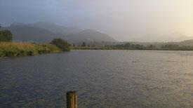 Ufer des Chiemsee mit Blick auf Kampenwand