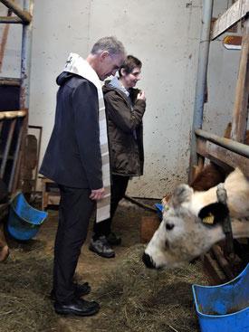 Pfarrer Jürgen mit den Kühen