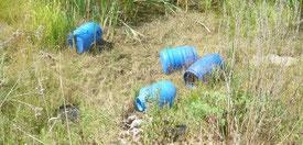 248 Föten wurden in diesen Fässern transportiert und am Rande einer viel befahrenen Hauptstrasse ausgeleert. Da diese Kinder keine Zuführung zur Totenbeschau erlebt haben, waren Sie in solchen Fässern erfasst und transportiert worden.