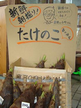 大垣 駅 飛騨牛 うどん そば 手打ち タケノコ