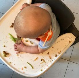 Baby-led Weanign Alltagstipps für stressige Zeiten