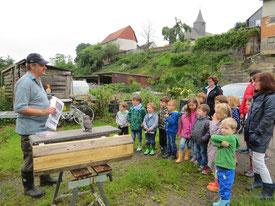 16.06.2016 Michael Bodenbender stellt den Kindergartenkindern den Steinkauz vor - Foto: Friedrich-Karl Menz