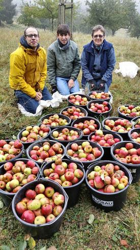Geschafft: Ernte im Siebengebirge (Bild: U. Redeker)