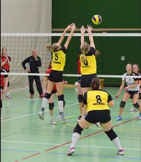 die 1. Damen unserer Volleyballabteilung