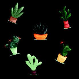 #My Monic #ropa swarovski #merchandising #luxury ##logos empresa #logos camisetas #logos gratis #camisetas con cristales de swarovski #swarovski #cristales #eventos #congresos #ropa de fiesta #estampaciones digitales #dibujo cactus #estampaciones