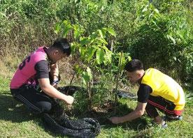 生徒たちが直接恩恵を感じられるよう、6 種類の果樹を植樹。