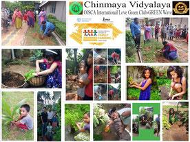 学校での活動に参加できない生徒には、種苗を配り、家庭での植樹も支援