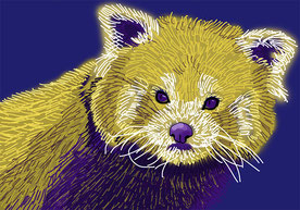 Yellow Purple RedPanda - 70x100 cm