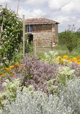 Paysagiste jardinier à Seignosse, hossegor, Capbreton et alentours,  potagers, vergers, plantes comestibles, jardins nourriciers, haies fruitières, jardins forêt,